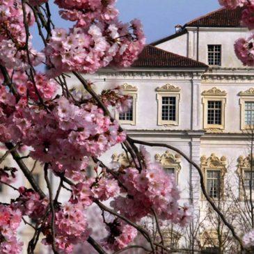 Reggia di Venaria – Unesco – Eventi e orari