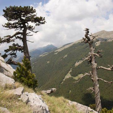 Parco Nazionale del Pollino – UNESCO Global Geopark